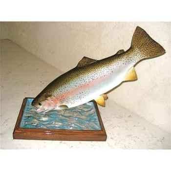 Trophée poisson d\'eau douce Cap Vert Truite arc en ciel -TRDF12