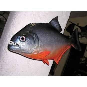 Trophée poisson d\'eau douce tropicale Cap Vert Piranha -TR021