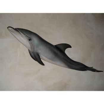 Trophée mammifère marin Cap Vert Grand dauphin -TRDF26