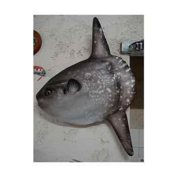Trophée mammifère marin Cap Vert Poisson lune -TRDF28