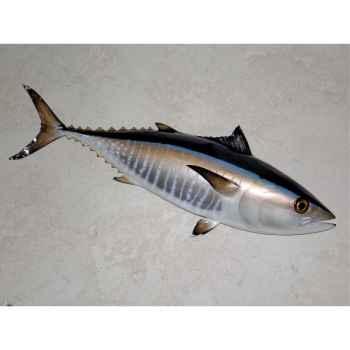 Trophée poisson des mers atlantique méditerranée et nord Cap Vert Thon rouge -TR049