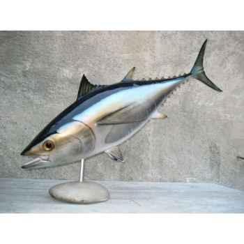 Trophée poisson des mers atlantique méditerranée et nord Cap Vert Thon rouge -TRDF50