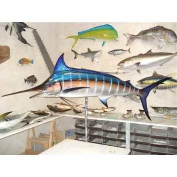 Trophée poisson des mers tropicales Cap Vert Marlin bleu -TR058