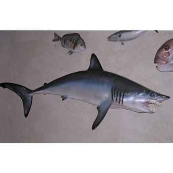 Trophée poisson des mers tropicales Cap Vert Requin mako -TR065