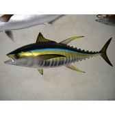 trophee poisson des mers tropicales cap vert thon jaune tr066