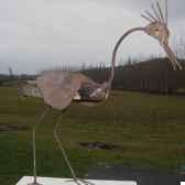 oiseau en bois flotte avec ailes metaterre sauvage do07