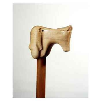 Canne bois Polychrome Sabueson -A20