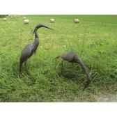 petit heron pourpre en metarecycle terre sauvage ma51
