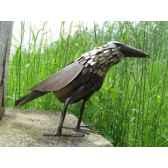 corbeau en metarecycle terre sauvage ma46