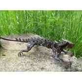 iguane en metarecycle terre sauvage ma59