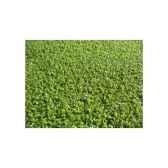 gazon synthetique gardengrass sans remplissage multi