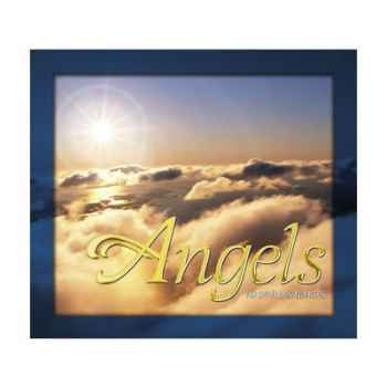 CD Angels Vox Terrae-17109740