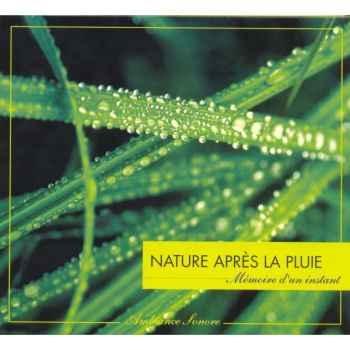 CD Ambiance Sonore Vox Terrae Nature Apres La Pluie -vt0128