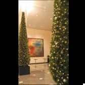 thuya pyramide 120 cm professionne150 lampes