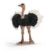 figurine schleich afrique autruche male 14610