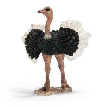 Figurine Schleich Afrique Autruche mâle -14610