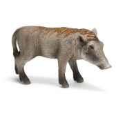 figurine schleich afrique bebe phacochere 14612