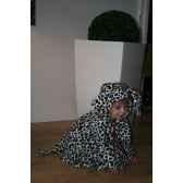 costume poncho dalmatien 3 5 ans