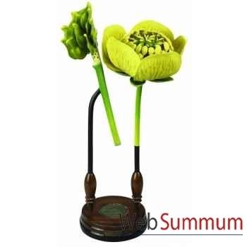 Fleur Ranunculacea -MC283
