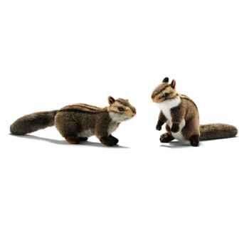 Peluche Ecureuil du japon (à 4 pattes + dressé) 19cm Anima 3089