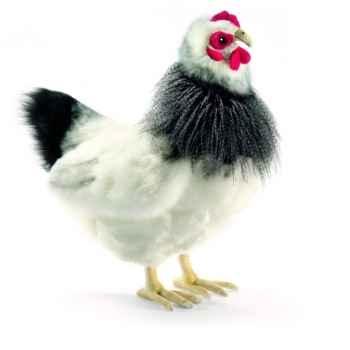Peluche Poule noire et blanche 23cm Anima 5620