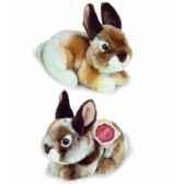 peluche hermann teddy peluche lapin assis 2 couleurs au choix 19 cm 93721 0