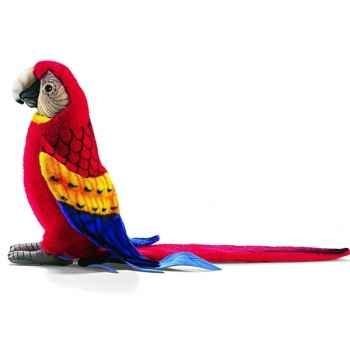 Anima - Peluche ara rouge 31 cm -3067