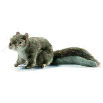 Anima - Peluche écureuil gris 18 cm -4840