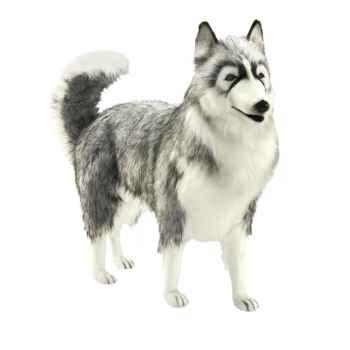 Anima - Peluche husky gris 70 cm -5047
