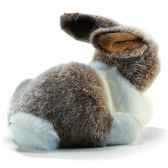 anima peluche lapin couche blanc beige 24 cm 1616
