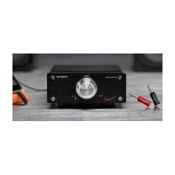 Amplificateur miniature tangent -ampster