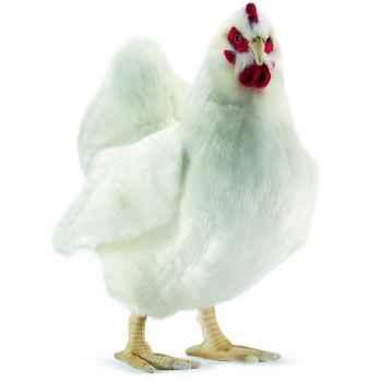 Anima - Peluche poule blanche 40 cm -4172