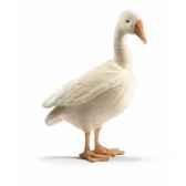 peluche oie blanche 52cmh anima 4946