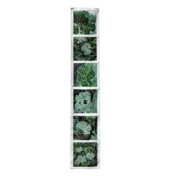 """Maron Bouillie-Sur le passage-Vide-poches vertical, illustration """"Végétal""""."""