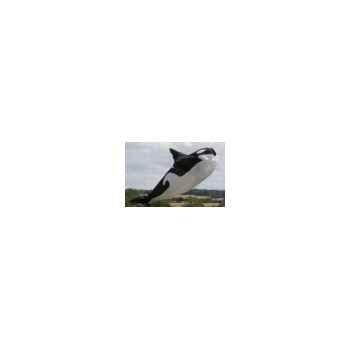 Orque Cerf Volant 1260975291_5729