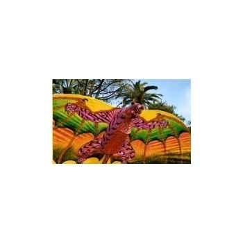 Occasion : tigre 5 mètres indonésien Cerf Volant 1290369880_3403