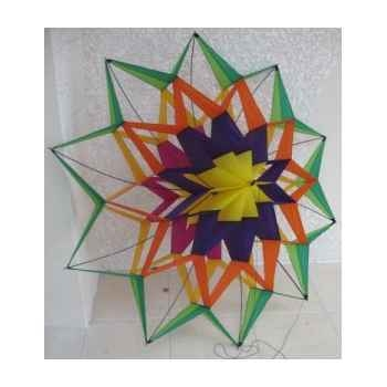 Cellno55 cerf-volant wega lotus Cerf Volant 1290523954_3707