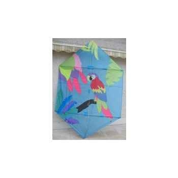 Cerf-volant rokkaku perroquet occasion Cerf Volant 1290692960_3463