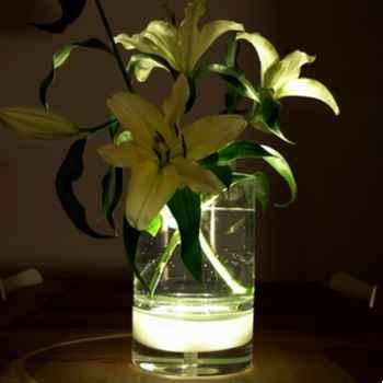 Vase inttérieur avec lumière fleur lampe 29 cm Verre