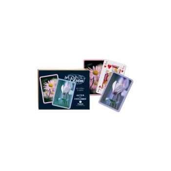 Aster + cyclamen Piatnik-jeux 258343