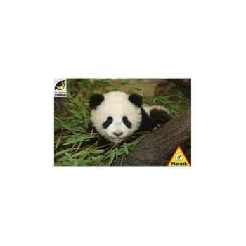 Bébé panda, zoologique schönbrunn à vienne Piatnik-jeux 556869