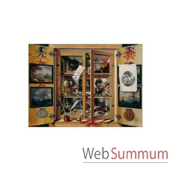 Puzzle Cabinet de curiosite Puzzle Michèle Wilson A108-500