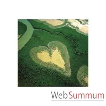 Puzzle Coeur de voh Puzzle Michèle Wilson A238-80