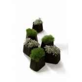 pot rock garden modular smaldesign alain gilles qui est paurock garden small
