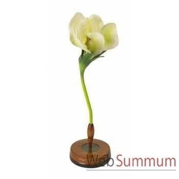 Fleur pisum décoration marine amf mc277