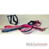 collier sangle imprimee fermoir plastique 25 30cm sellerie canine vendeenne 38715