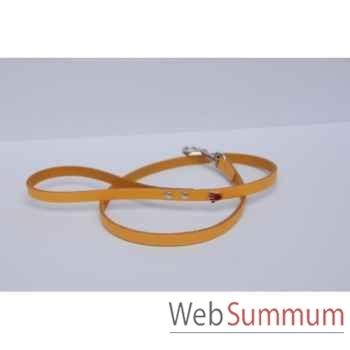 Laisse cuir classique 10 mm l. 1m- patte peinte Sellerie Canine Vendéenne 77560