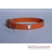 collier cuir classique 12mm 33 cm patte peinte sellerie canine vendeenne 80361