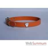 collier cuir classique 16mm 40 cm patte peinte sellerie canine vendeenne 80363