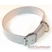 collier cuir pfleur chrome double et pique 18 mm 45 cm sellerie canine vendeenne 81818
